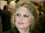 Brigitte Bardot a perdu son chat et promet 600 euros à qui le lui rendra