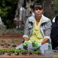 Michelle Obama plante des légumes dans le potager de la Maison Blanche. La First Lady était comme toujours entourée d'élèves. Washington le 4 avril 2013.
