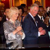 Charles et Camilla : Ambiance de Caraïbes au palais, avant les ors du Parlement