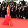 Inès de la Fressange sur le tapis rouge de la présentation de  Jeune et Jolie  de   Francois Ozon, au Palais Des Festivals, le 16 mai 2013.