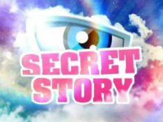 Découvrez à quoi ressemble la vie de la Voix de Secret Story !