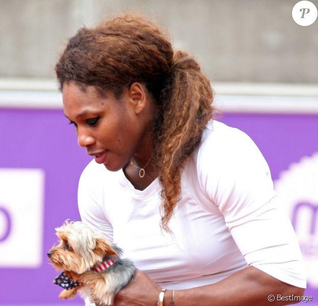 Serena Williams et son inséparable petit chien Chips, le 14 juillet 2013 à Bastad en Suède