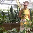 """""""La reine Maxima des Pays-Bas à Leyde le 4 septembre 2013 pour inaugurer après rénovation les serres tropicales de Hortus Botanicus Leiden, l'un des plus vieux jardins botaniques"""""""