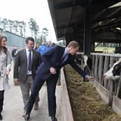 Prince William : Etudiant en agriculture, il doit se séparer de Kate et George