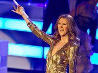 Céline Dion, reine de Las Vegas : Purepeople vous raconte le show de l'intérieur