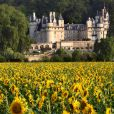 Exclusif : Le chateau d'Ussé, situé à Rigny-Ussé entre Angers et Tours, a 285 km au sud de Paris, accueillera le 24 mai le mariage dont tout le monde parle, celui de Kim Kardashian et Kanye West. Après le refus du Chateau de Versailles d'autoriser ce mariage, le chateau d'Ussé, qui aurait inspiré Charles Perrault pour le décor de la Belle au bois dormant, est le lieu choisi.