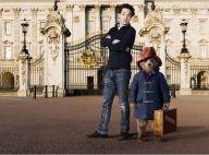 Guillaume Gallienne est Paddington : Irrésistible face à Nicole Kidman
