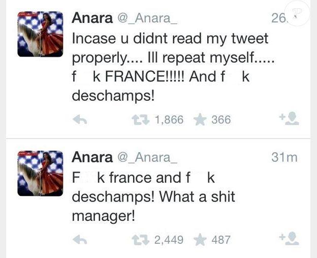Anara Atanes pète un cable contre Didier Deschamps sur Twitter.