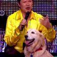 """José et son merengue dog - """"La France a un incroyable talent 2015"""" sur M6. Episode 1 diffusé le 9 décembre 2014."""