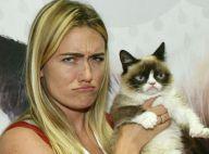 Grumpy Cat : Découvrez la somme incroyable qu'a touchée sa propriétaire...