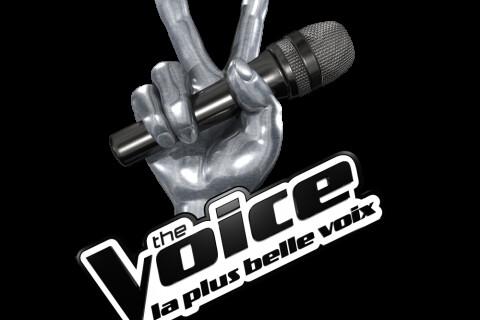 The Voice 4 : Les Talents à la conquête de leur âme d'enfant à Disneyland Paris