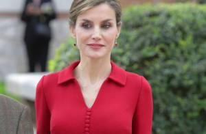 Letizia d'Espagne : Belle écolière puis femme fatale pour le prix Cervantes