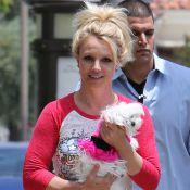 Britney Spears : Les sommes hallucinantes qu'elle dépense pour ses chiens...