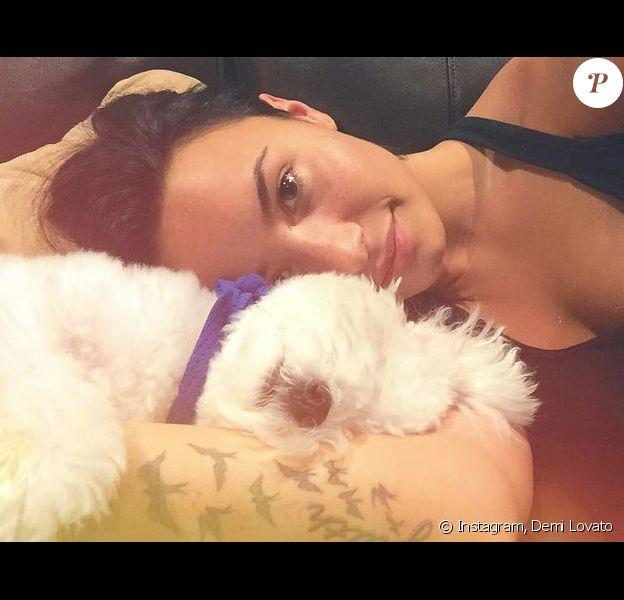 Demi Lovato et son chien Buddy, sur Instagram. Juillet 2015