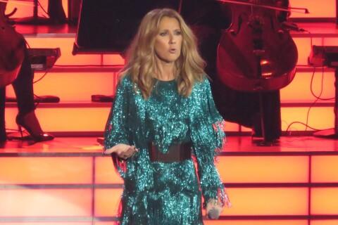 Céline Dion : Frayeur sur scène, un fan tente de la toucher !