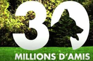 30 millions d'amis : Le combat pour la survie de l'émission continue...