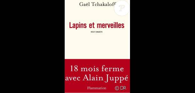 Le livre de Gaël Tchakaloff, Lapins et merveilles, aux éditions Flammarion
