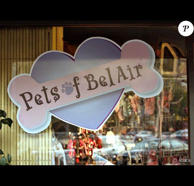 Le Pet Shop le plus célébre du monde