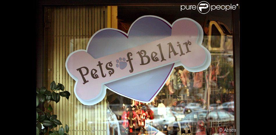 Le pet shop le plus c l bre du monde for Shop le monde