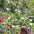 Alexander Skarsgard et Alexa Chung passent une journée romantique dans un jardin botanique à New York, le 30 mai 2015