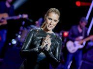 """Céline Dion au M6 Music Show : """"Ça fait chaud au coeur..."""""""