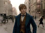 Harry Potter : Le prochain film des Animaux fantastiques tourné à Paris ?
