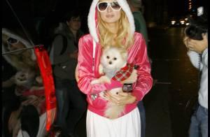 PHOTOS : Paris Hilton... une Mère Noël ridicule au sommet de la kitsch attitude !