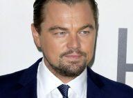 """Leonardo DiCaprio et le cast de """"Quoi de neuf docteur"""" réunis pour Alan Thicke"""