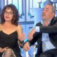 "Isabelle Mergault et Antoine Duléry - ""Salut les terriens !"", samedi 1er avril 2017, C8"