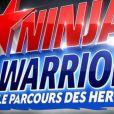 """Laura Mété, qui incarne Lady Boo dans """"Fort Boyard"""" (France 2), a participé à """"Ninja Warrior"""" sur TF1 le 14 juillet 2017."""