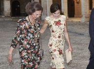 Letizia et Sofia d'Espagne : Complices à l'unisson pour le gala à la Almudaina