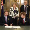 Les princes Harry et William ont rendu hommage aux victimes d'incendies en Australie, avant de se rendre à l'inauguration du mémorial... 24/02/09