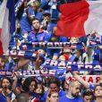 1er match de la Finale de la coupe Davis opposant la France à la Belgique remporté par Goffin (7-5, 6-3, 6-1) au Stade Pierre Mauroy à Lille , le 24 novembre 2017. © Perusseau - Ramsamy / Bestimage