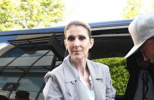 Céline Dion engendre des millions mais crée la polémique...