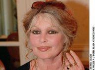 """Brigitte Bardot sera enterrée à La Madrague, loin des """"connards"""""""