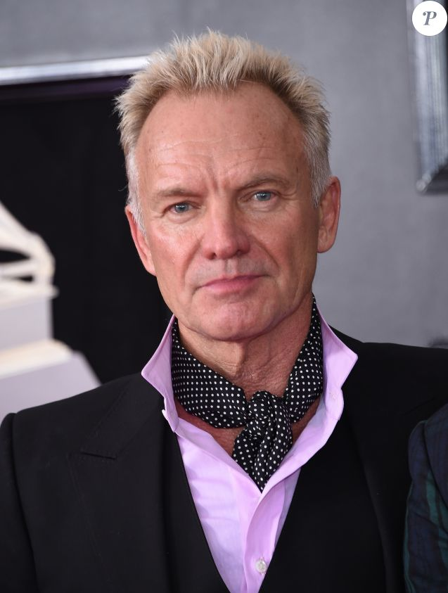 Sting - 60e soirée annuelle des Grammy Awards à Madison Square Garden à New York, le 28 janvier 2018 © Chris Delmas/Bestimage