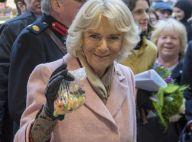 Camilla Parker Bowles enceinte à 70 ans ?! Son fils Tom ne s'affole pas...