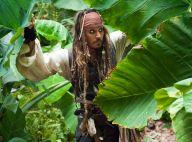 """Johnny Depp : Viré de """"Pirates des Caraïbes"""" après quinze années !"""