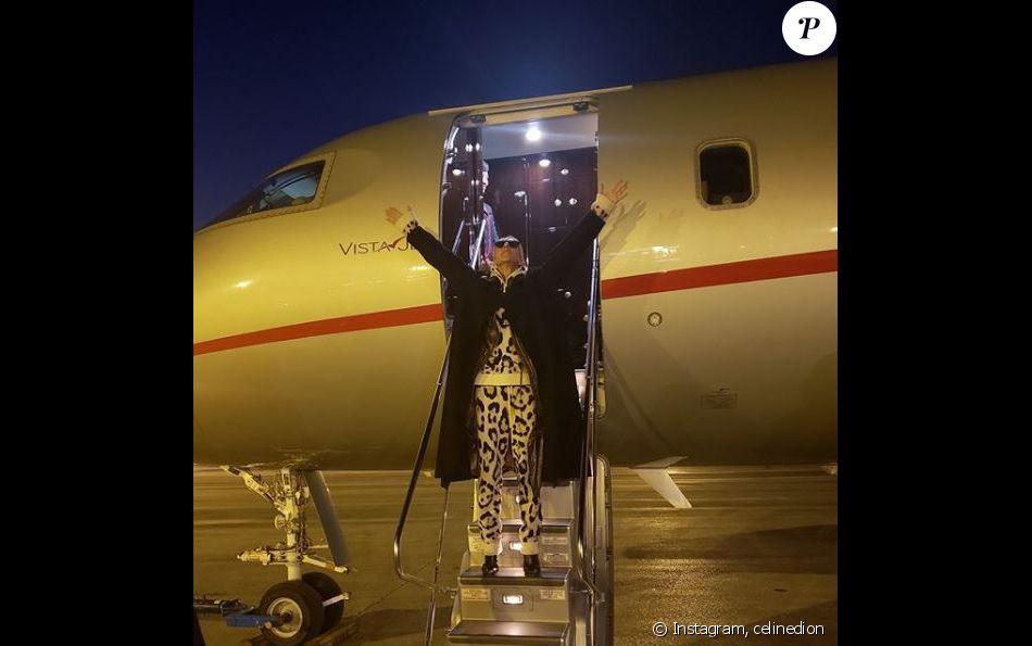 Céline Dion est arrivée à Paris, le 21 janvier 2019
