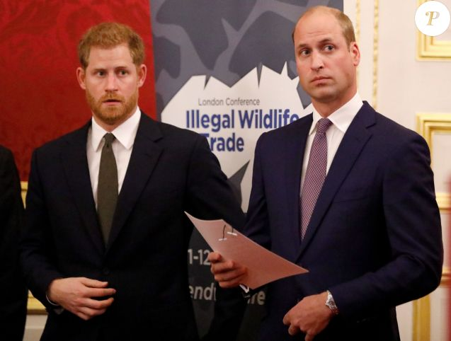 "Le prince William, duc de Cambridge, et le prince Harry, duc de Sussex, participent en compagnie de Lord William Hague, à une conférence organisée par la ""United for Wildlife Financial Task Force"" à la Mansion House à Londres, le 10 octobre 2018."