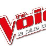 Finale de The Voice 8 : Pourquoi la date a été déplacée