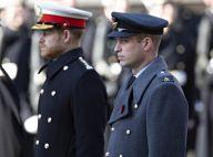 """Le prince Harry et le prince William : toujours en froid mais """"soulagés"""""""