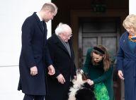 Kate Middleton et William en Irlande : un célèbre chien leur vole la vedette