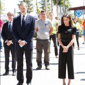 Letizia et Felipe d'Espagne : Recueillis pour la fin du deuil national