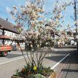 Hunspach est élu village préféré des Français le 1er juillet 2020 dans l'émission de Stéphane Bern sur France 3. La commune alsacienne, située dans les Bas-Rhin, représentait le Grand Est.