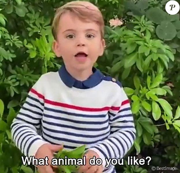 Prince Louis - David Attenborough répond aux questions de fans célèbres, dont le prince George, la princesse Charlotte et le prince Louis.