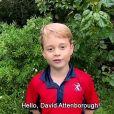 Prince George - David Attenborough répond aux questions de fans célèbres, dont le prince George, la princesse Charlotte et le prince Louis, au Royaume Uni, le 3 octobre 2020.