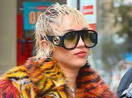Miley Cyrus : Sa chienne électrocutée dans les coulisses de The Voice