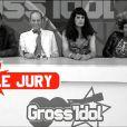 GrossIdol taille les concurrents de la télé réalité avec le clip de Musique Universelle, de Bamgli