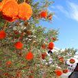 Exclusif - Alizée a participé à la dernière journée de la 9ème édition de l'association 'La Marie Do' à Ajaccio en tant que marraine le 11 octobre 2015. © Photos Olivier Huitel / Crystal / Bestimage